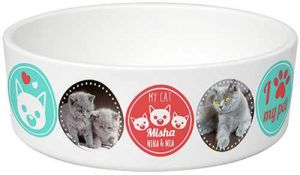 Impresión en bol para mascotas
